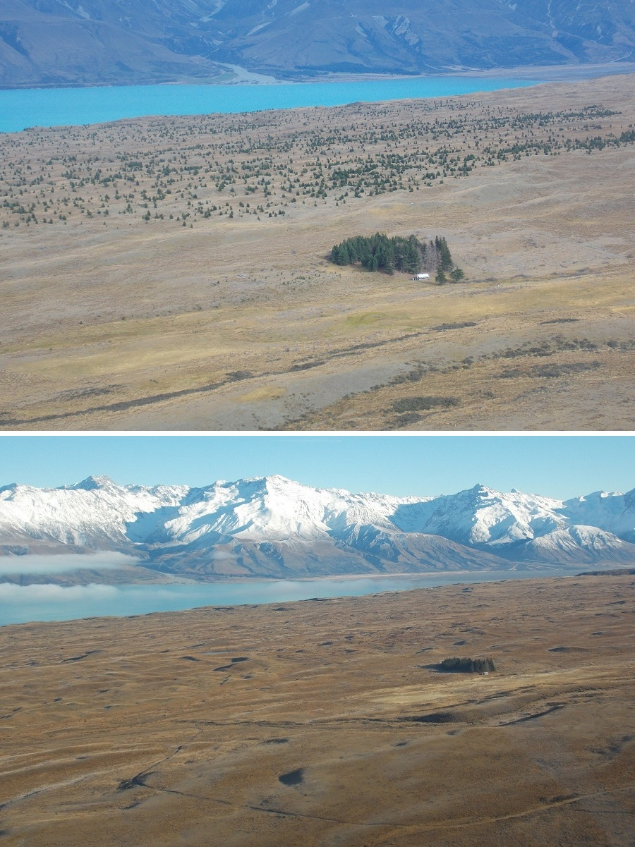 Tekapo West MU - Braemar Before and After